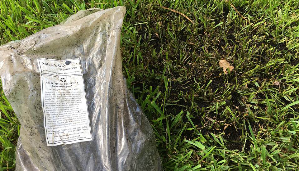 Nature S Way Leaf Mold Compost