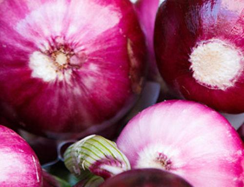 Onion Sets 101