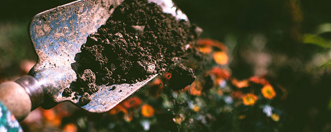 Shovel digging up soil in outdoor garden
