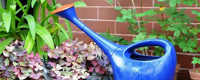 container gardening moisture feature