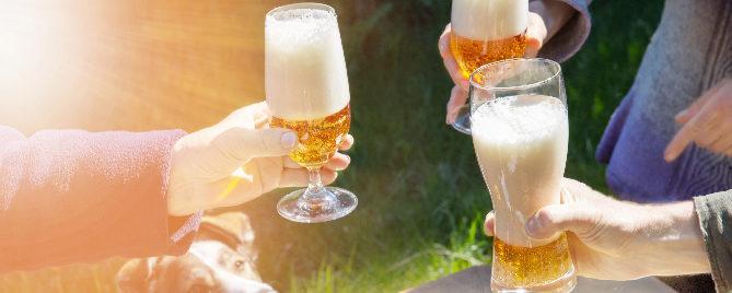 Growing Beer Houston Texas Plants for all Seasons