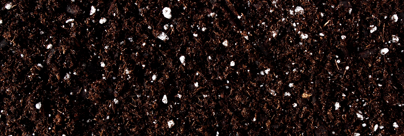 Potting With Peat Houston Texas Plants for all Seasons