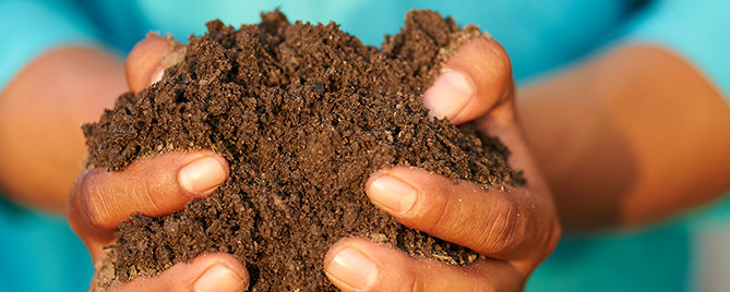 why-your-soil-absolutely-needs-compost-hands-holding-soil