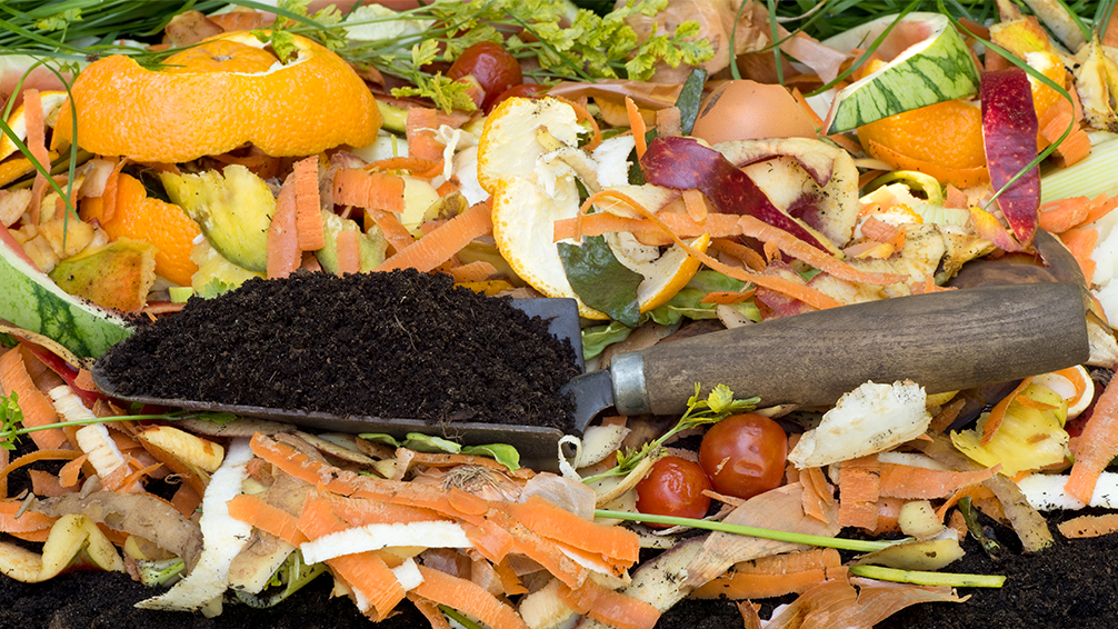 why-your-soil-absolutely-needs-compost-kitchen-food-waste-trowel-soil