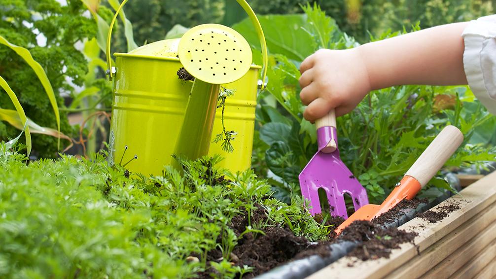 kid-friendly-vegetable-garden-toddler-gardening-tools