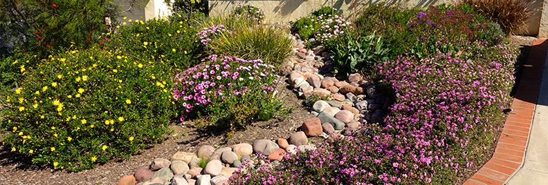 urban-prairie-gardening-urban-prairie-garden-header