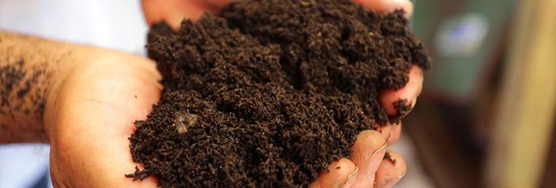 improving-soil-hurricane-harvey-hands-holding-soil-2