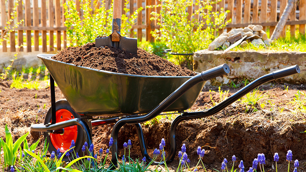 improving-soil-hurricane-harvey-wheelbarrow-garden-soil