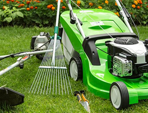 How To Tune Up Your Lawnmower In 10 Steps