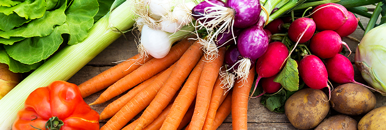 pfas-vegetable-garden-fall-crops-header