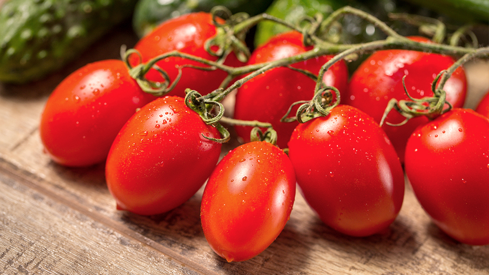 PFAS-tasty-fall-tomatoes-roma