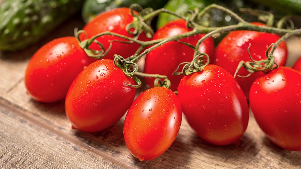 PFAS-tasty-fall-tomatoes-roma