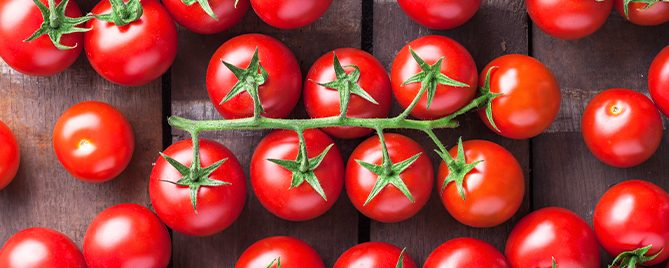 PFAS-tasty-fall-tomatoes-sweet-million-header