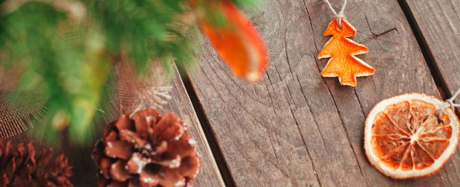 PFAS-christmas-tree-trends-citrus-orange-ornaments-pine-cones-header